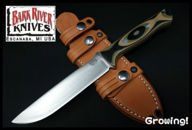 BARK RIVER BRAVO 1.5 LT 3V
