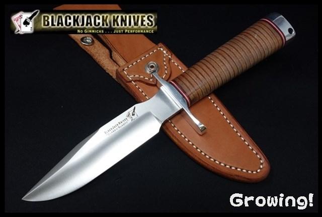Blackjack Model 5